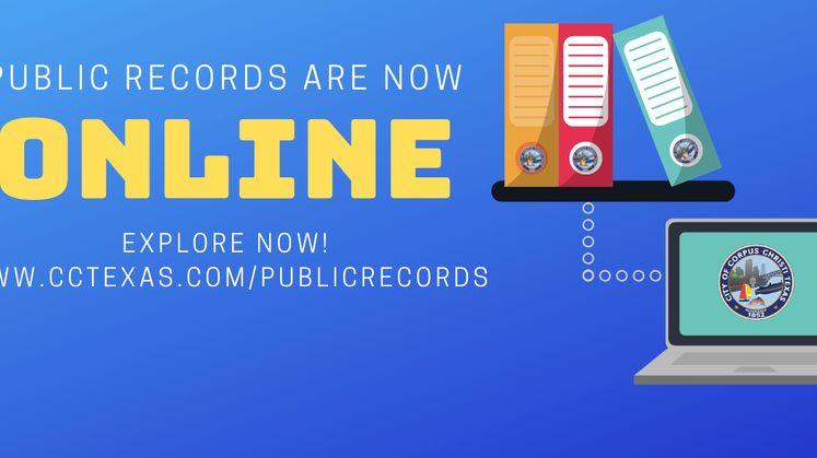 Online Public Records