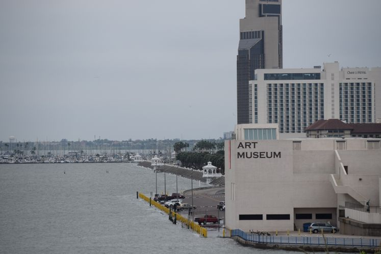 City's View from Texas State Aquarium