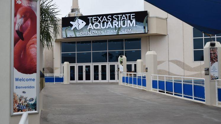 TX State Aquarium