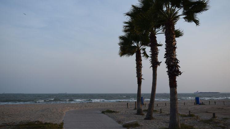 North Beach Beachwalk