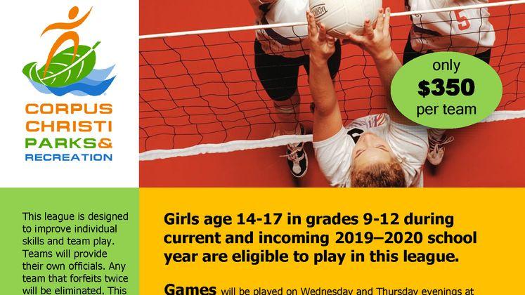 High School Volleyball League Flyer