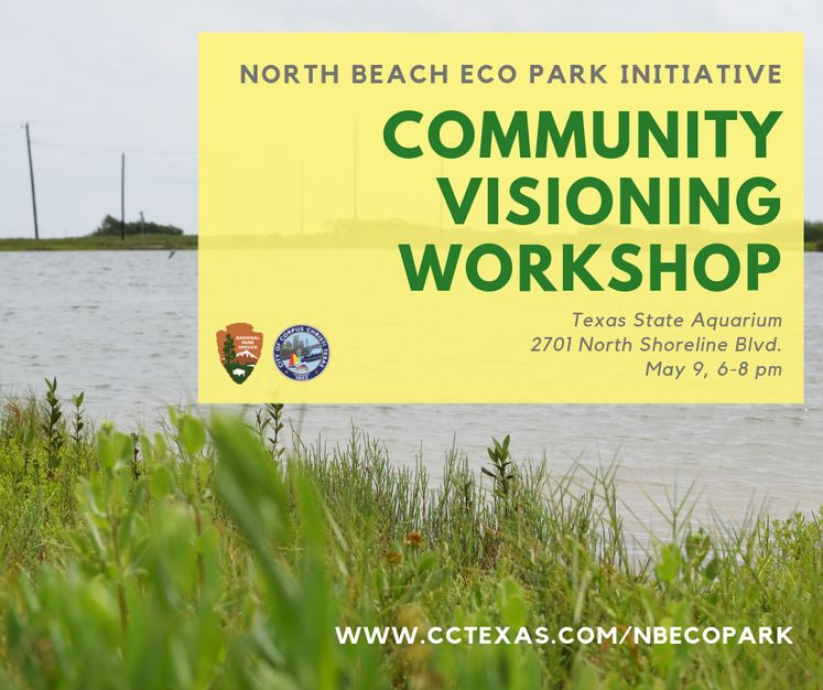 north beach eco park initiative