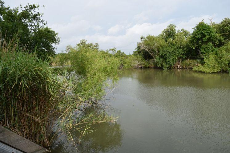 Nueces River at Calallen