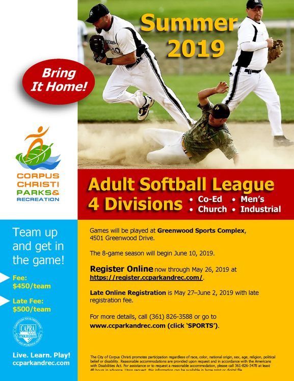 Adult Solftball Leagues 2019 Flyer