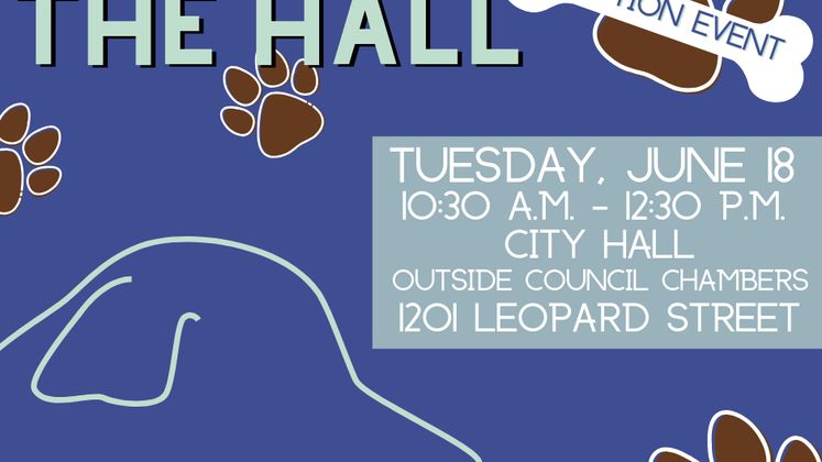 Dogs In The Hall Social Graphic