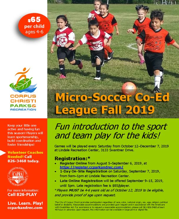 Soccer League 2019