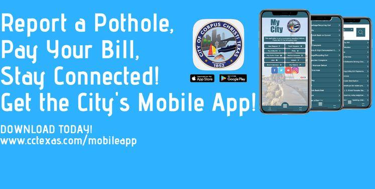 Mobile App Carousel