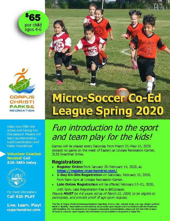 Micro-Soccer Flyer