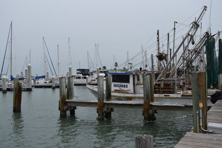 Shrimp Boats - CC Marina
