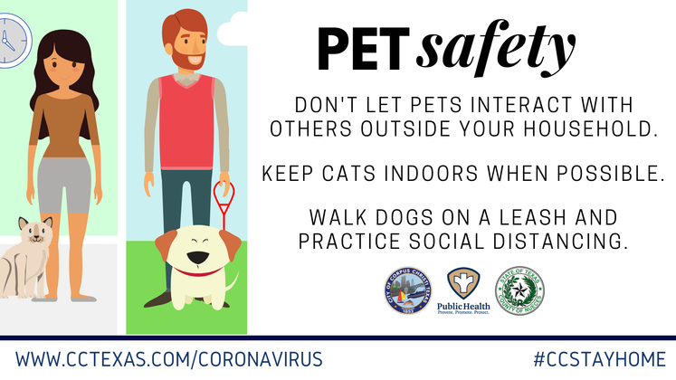 Pet Safety During COVID-19