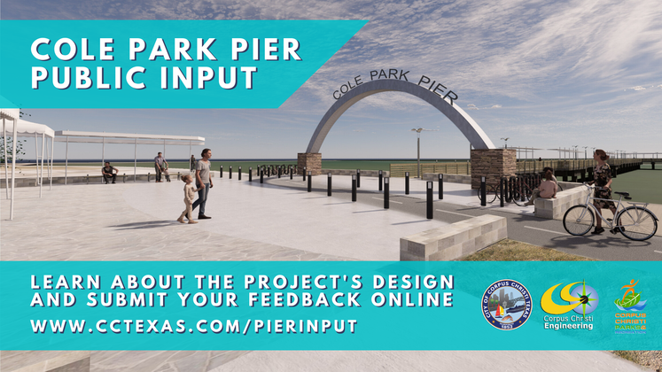 Graphic 5-20-20 Cole Park Pier Design Input _2