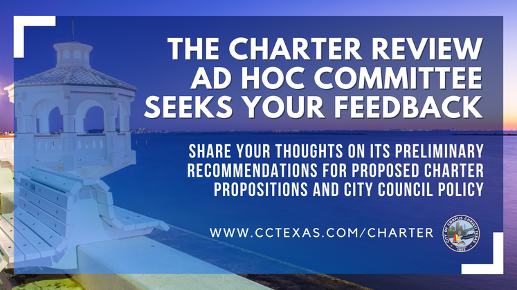 Graphic 6-10-20 Charter Review Committee Feedback 1