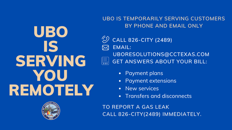 UBO new schedule