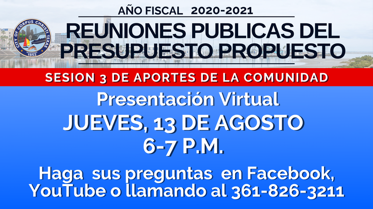 _Proposed Budget 2020-2021  Session 3 Spanish