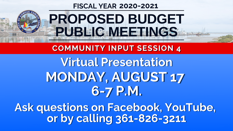 Graphic 8-17-20 Budget Input Session 4