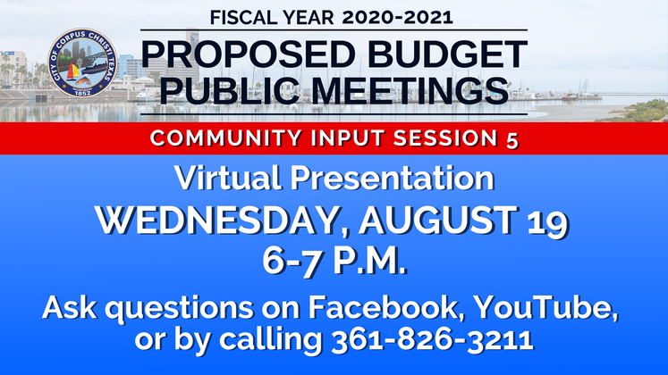 Graphic 8-19-20 Proposed Budget 2020-2021 Meeting 5