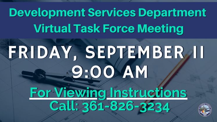 Graphic 9-9-20 Virtual Task Force Meeting