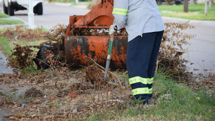 Solid Waste's Brush Pick-up
