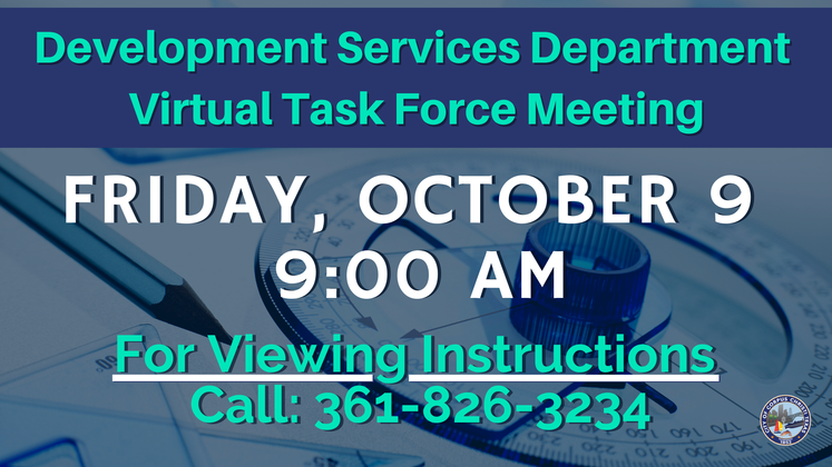 Graphic 10-7-20 Virtual Task Force Meeting 1