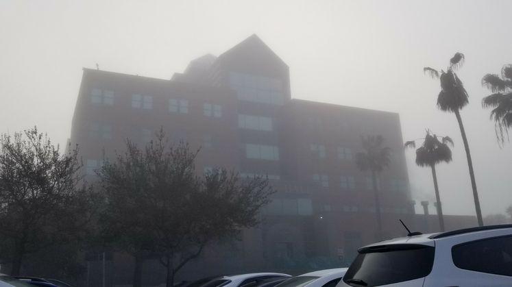 Dense Fog This Morning
