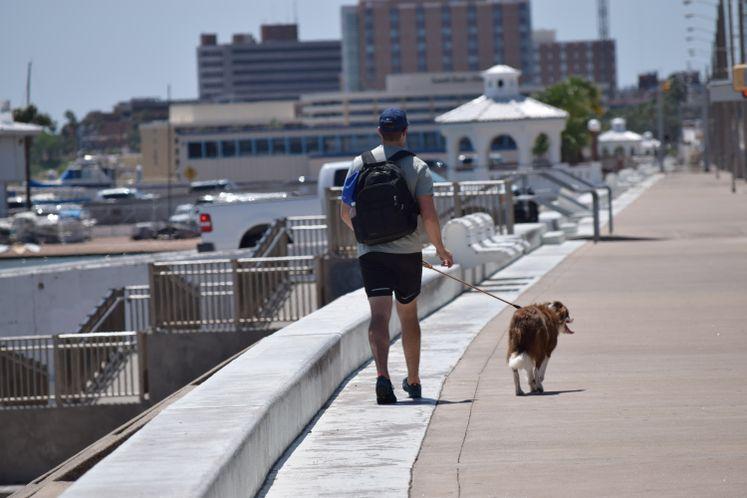 Taking a stroll on Shoreline