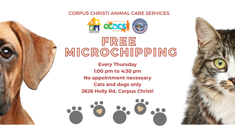 Free Microchips 6-09-21 Social