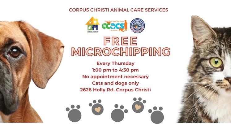 Free Microchips
