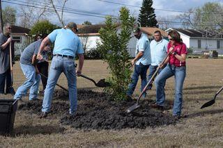 Cullen Park Tree Planting