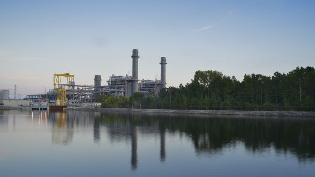Duke Energy invests $1 million to promote water quality in the Cape Fear region