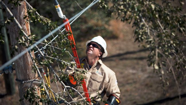 Duke Energy tackles outages in Florida; 800,000 restored after Hurricane Irma
