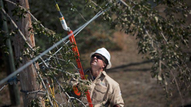 Duke Energy afronta los cortes de suministro eléctrico en Florida; 800,000 cortes han sido restablecidos después del huracán  Irma