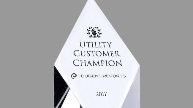 Piedmont Natural Gas named Natural Gas Utility Customer Champion