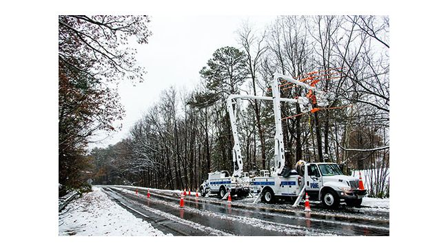 Winter Storm Recovery - Raleigh, N.C. Area