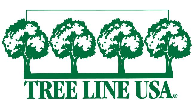Duke Energy Florida recognized as Tree Line USA utility for 12th consecutive year