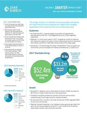 2017 Sustainability Report Summary