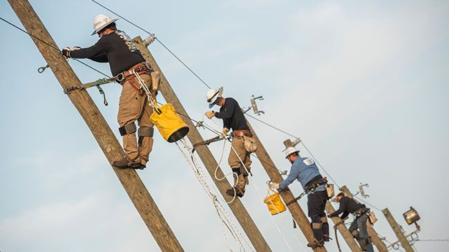 New electrical lineworker program and training ground now open at Florida's St. Petersburg College