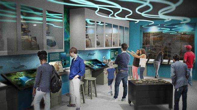Duke Energy Foundation gives $100,000 to new 'Story of Florida Water' exhibit  at Florida Museum of Natural History in Gainesville