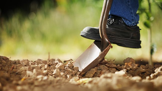 Ready to dig? During National Safe Digging Month, Duke Energy reminds customers to call 811 first