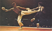 Cecil_press_martial_arts_museum