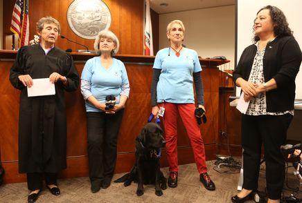 San Francisco Courthouse Dog