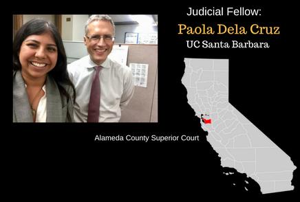 Judicial Fellows for 2017-2018