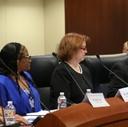 Judicial Council meeting 3-15-19 San Joaquin innovation grant project