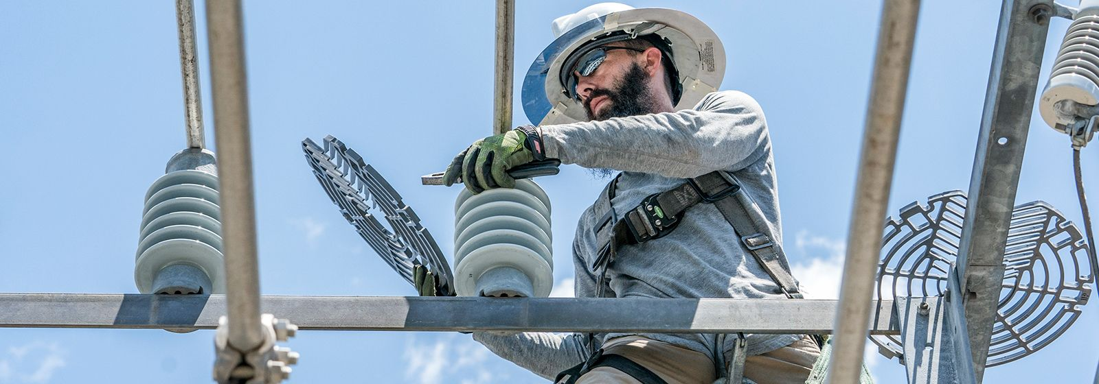 Can energy companies keep critters safe and customers happy?