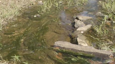 Development of an Adopt-a-Stream Program for Spartanburg County