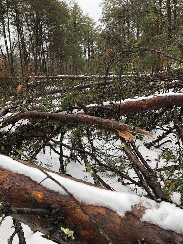 2018-1211-Winter-Storm-12