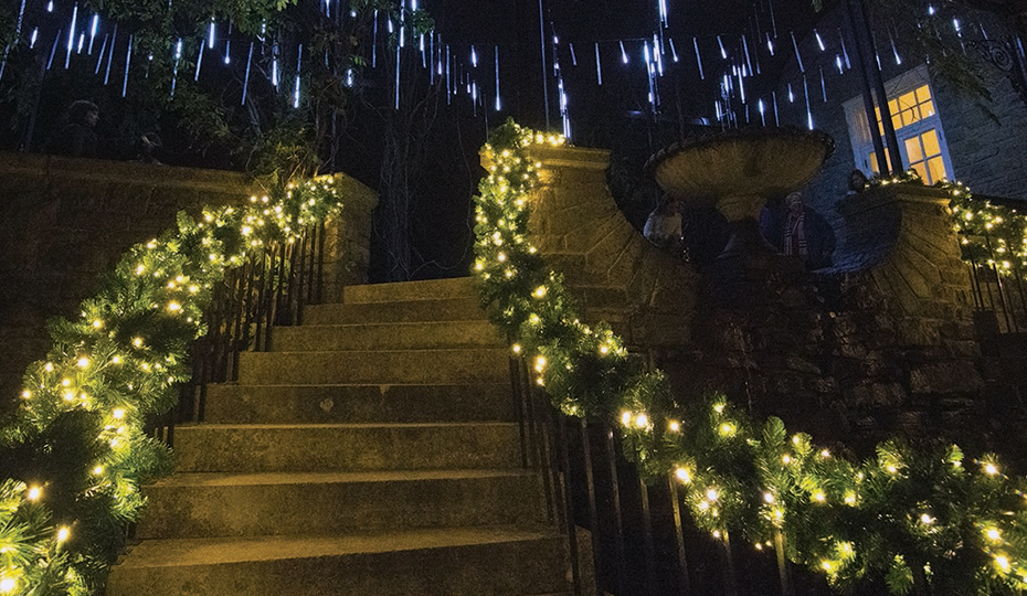 2019-1120-lights-cheekwoodTENN