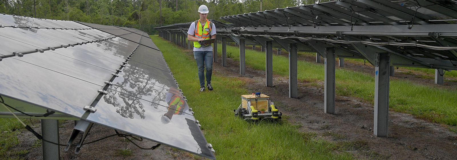 Innovation gets in the weeds under solar panels