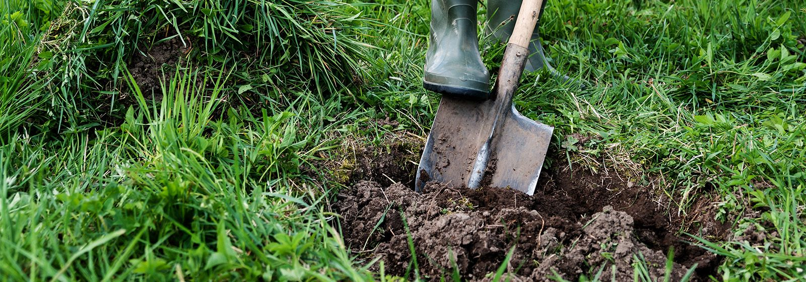 Before you dig, call 811. It's free
