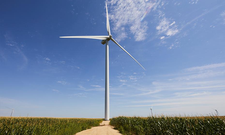 2020-0707-Wind-Growth-930-5