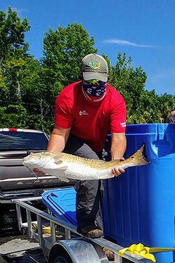 Fish donated to food bank <br> Florida